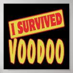 I SURVIVED VOODOO