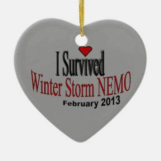 I Survived Winter Storm 2013 Ornament