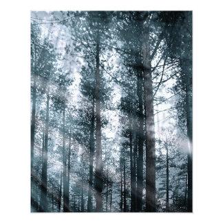 I Talk to the Trees... Photo Print