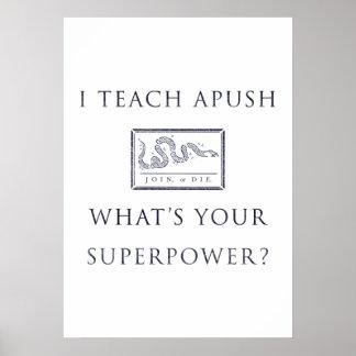 I Teach AP US History (APUSH) Poster