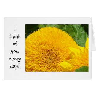 I think of you every day Cards Thinking of You
