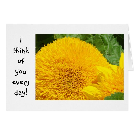 I think of you every day! Cards Thinking of You