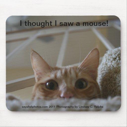 I thought I saw a Mouse Pad