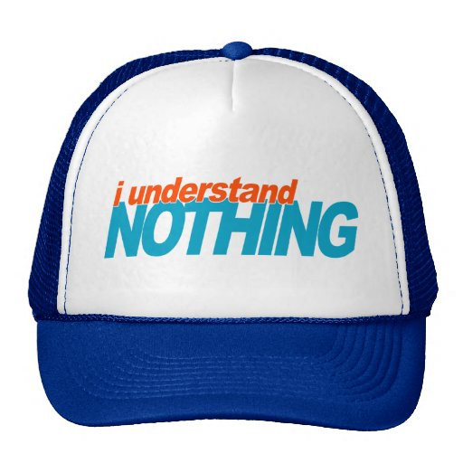 I Understand Nothing Mesh Hat