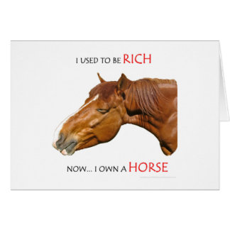 I Used to Be Rich Greeting Cards