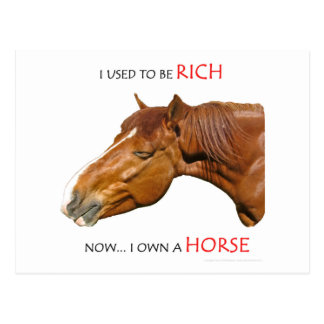 I Used to Be Rich Postcard