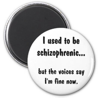 I used to be Schizophrenic... Magnet