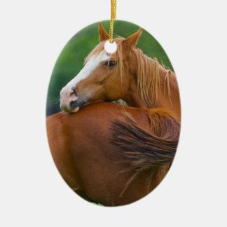 I ve Got Your Back Christmas Tree Ornament