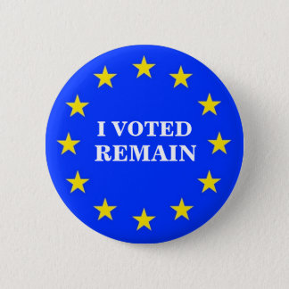 I VOTED REMAIN EU BADGE