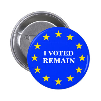 I VOTED REMAIN EU BADGE