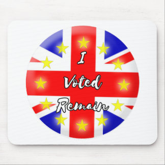 I voted Remain History Mouse Mat
