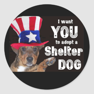 I want YOU to adopt a SHELTER DOG Round Stickers