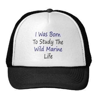 I Was Born To Study The Wild Marine Life Trucker Hat