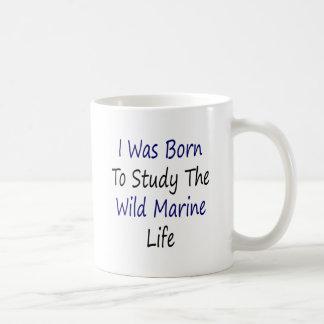I Was Born To Study The Wild Marine Life Mug