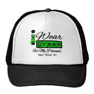 I Wear Green Ribbon (Retro) - Patients Mesh Hat