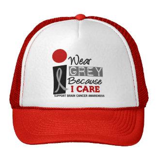 I Wear Grey Because I Care 9 BRAIN CANCER Cap