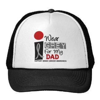 I Wear Grey For My Dad 9 BRAIN CANCER Cap