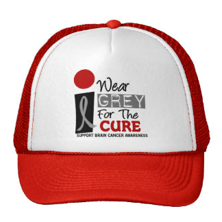 I Wear Grey For The Cure 9 BRAIN CANCER Cap
