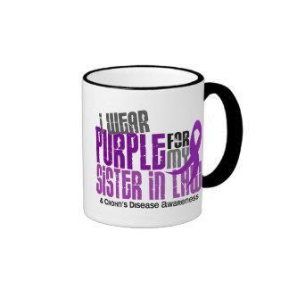 I Wear Purple For Sister-In-Law 6 Crohn's Disease Mugs