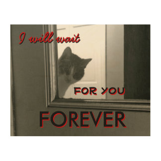 I will wait Forever Kitty Wood Canvas