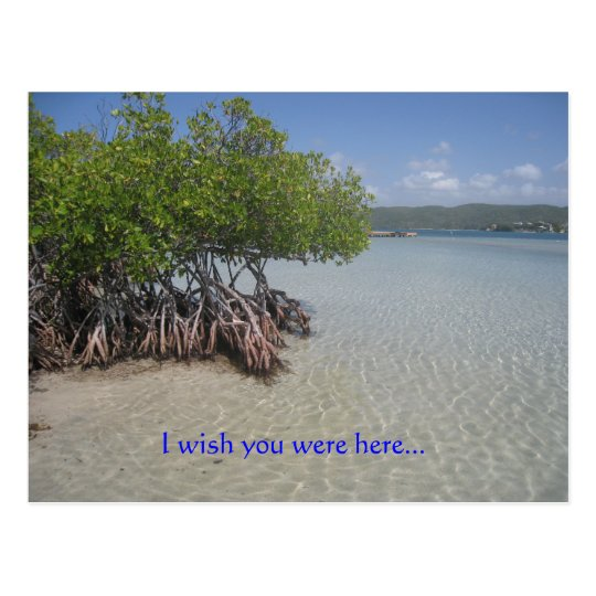 I wish you were herepostcard postcard