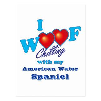 I Woof American Water Spaniel Postcard