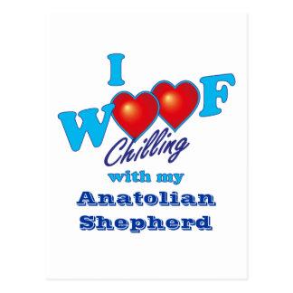 I Woof Anatolian Shepherd Postcard