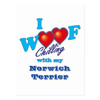 I Woof Norwich Terrier Postcard