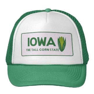 IA tall corn Mesh Hat