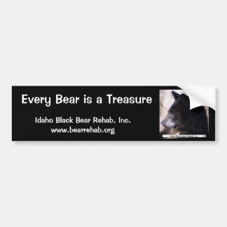 IBBR Bumper Sticker - Ruggles