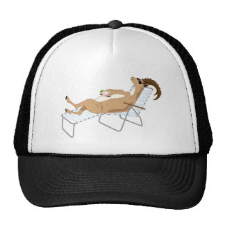 Ibex Lounging Cap