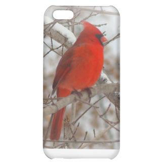 ibird case iPhone 5C cases