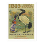 Ibis Cognac - Joseph Gautier & Fils Promo Postcard