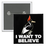 IBWO: I Want To Believe Badge
