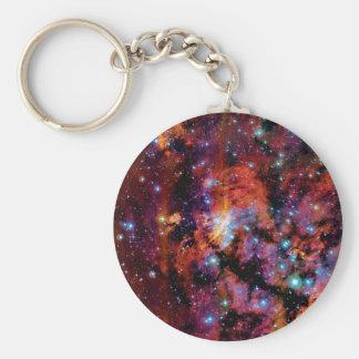 IC 4628 Prawn Nebula Basic Round Button Key Ring