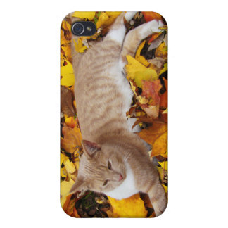 iCat case 4 Covers For iPhone 4