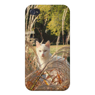iCat case 5 iPhone 4 Covers