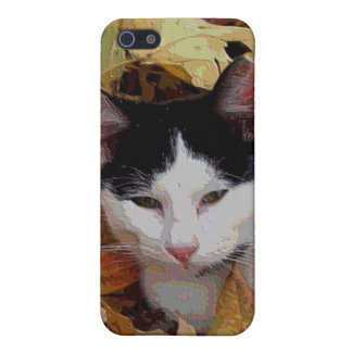 iCat case 6 Case For iPhone 5