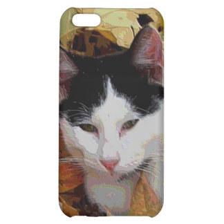 iCat case 6 Cover For iPhone 5C