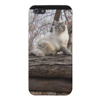 iCat case 7.5 iPhone 5 Case