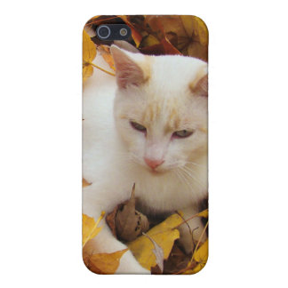iCat case Cover For iPhone 5/5S