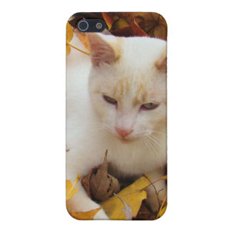 iCat case iPhone 5 Cover