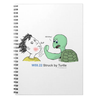 ICD-10: W59.22 Struck by turtle Notebook