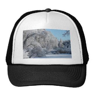 ice2 jpg mesh hat