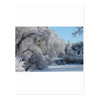 ice2.jpg postcard
