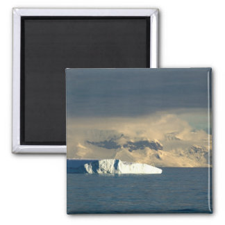 Ice Berg in the starts of the Drake Passage just Magnet