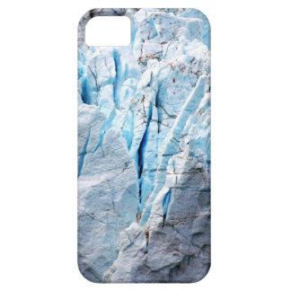 Ice case