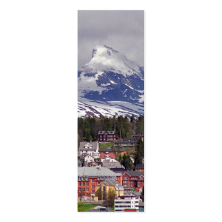 Ice City Bookmark Pack Of Skinny Business Cards