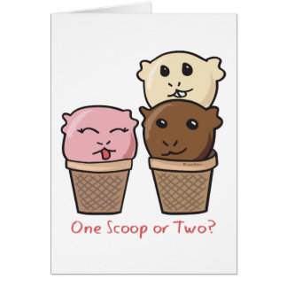 Ice Cream Scoops Note Card