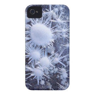 Ice crystals in the Sierra iPhone 4 Covers